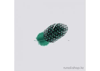 Перья для наращивания ногтей (светло-зеленый)