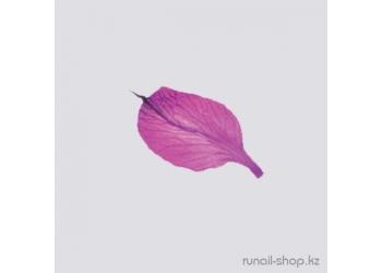 Сухоцветы для наращивания ногтей (розовый)