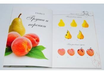 Дизайн для ногтей. Абстракция. Фрукты. Мирошниченко Е.