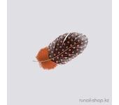 Перья для дизайна ногтей (оранжевый)