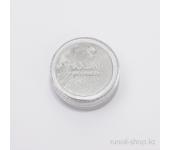 Дизайн для ногтей: пигмент для ногтей (серебряный)